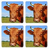 MSD Square Coasters Head of a cow against a pasture Image 35094378 by MSD Customized Tablemats Stain Resistance Collector Kit Kitchen Table Top DeskDrink Customized Stain Resistance Collector Kit Kitc