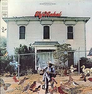 Taj Mahal [Vinyl LP] [Schallplatte]