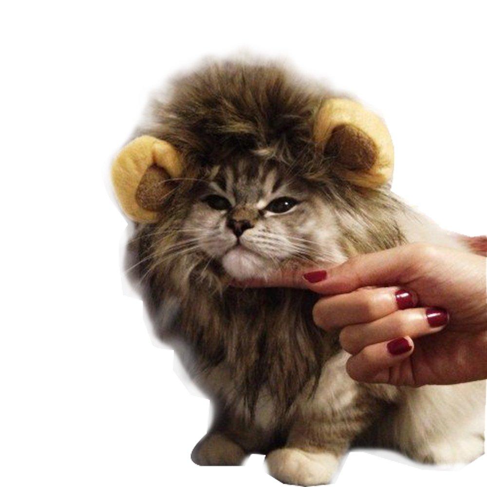 Rameng Lö wen-Kostü m fü r kleine Hunde, Katzen, Kopfbedeckung, Mä hne, Kostü m, Perü cke