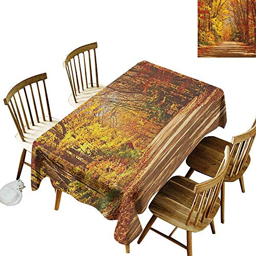 kangkaishi Anti-Wrinkle and Anti-Wrinkle Polyester Long Tablecloth for Weddings/banquets Scenic View Outdoors Empty Roadway Surrounded with Deciduous Trees Image W60 x L84 Inch Redwood Yellow Orange