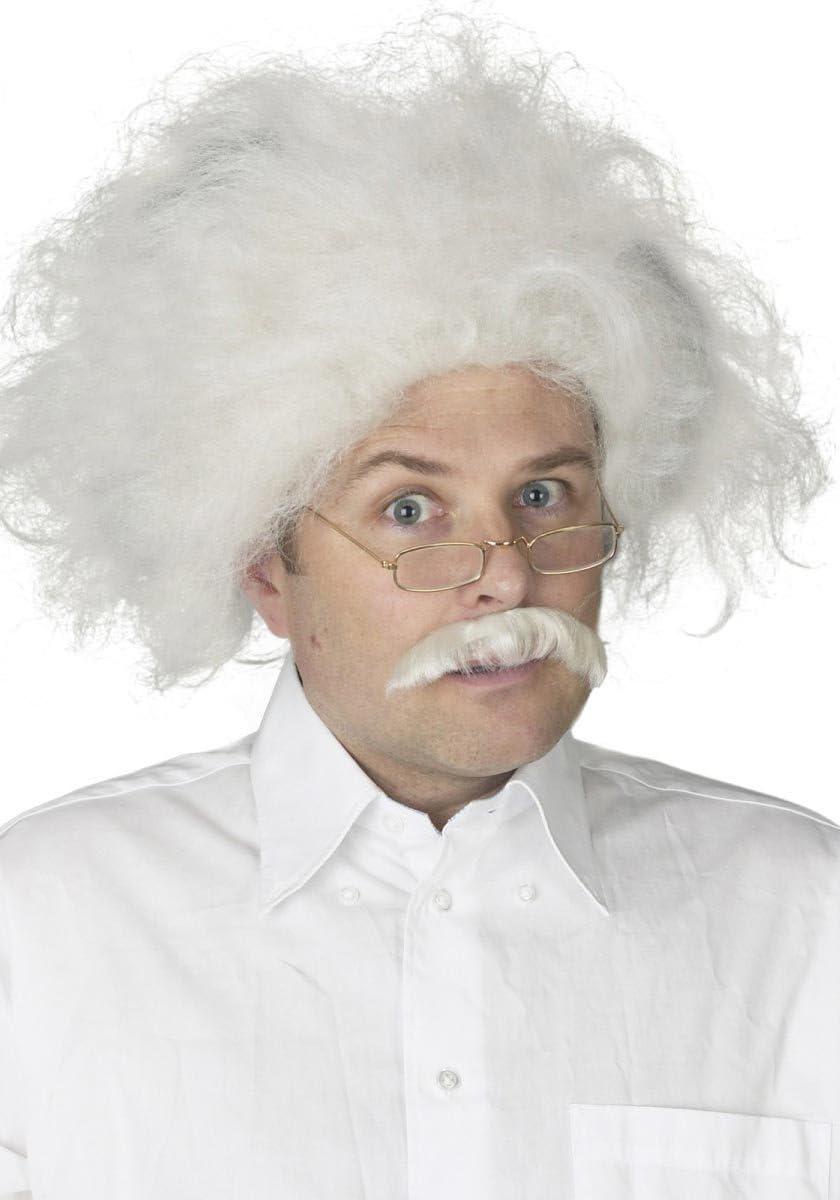 Einstein Wig Adult