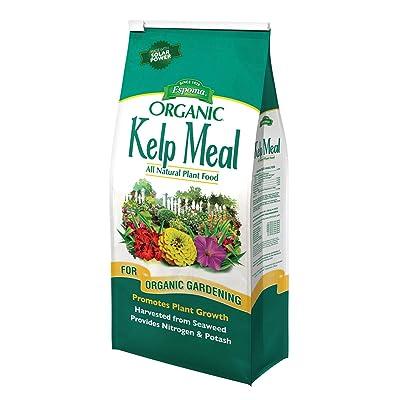 Espoma Company - Organic Traditions Kelp Meal 3.5 Pound - KM3-KM4 : Garden & Outdoor