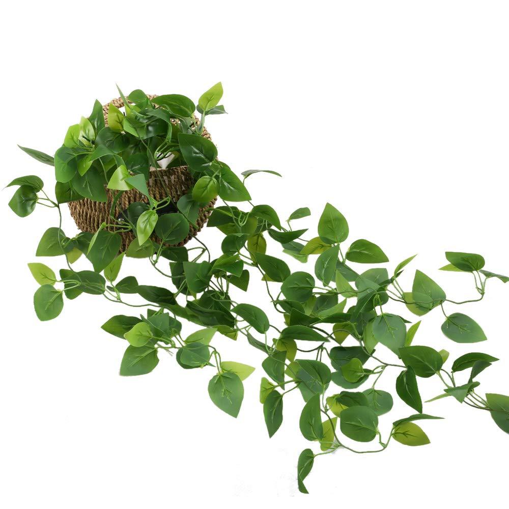 HUAESIN Lierre Artificiel Guirlande 3.4 FT pothos Plante Ivy Vigne /à Suspendre Feuille Plantes Artificielle pour Le Mariage Mur Interieur Ext/érieur Balcon Cl/ôture Treillis Verte
