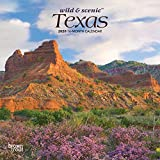Texas Wild & Scenic 2020 7 x 7 Inch Monthly Mini Wall Calendar, USA United States of America Southwest State Nature