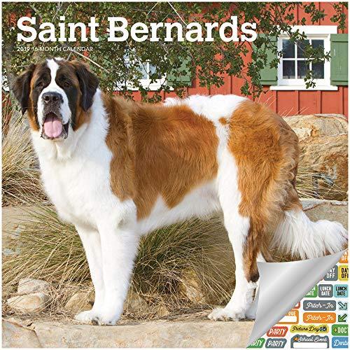 Saint Bernards Calendar 2019 Set - Deluxe 2019 Saint Bernards Wall Calendar with Over 100 Calendar Stickers (Saint Bernards Gifts, Office Supplies)