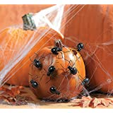 1 X Spider Pumpkin Push-Ins - Party Decorations & Wall Decorations