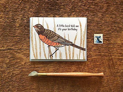 Little Bird Birthday, American Robin Card, Letterpress Birthday Card, Letterpress Folded Card, Blank Inside ()