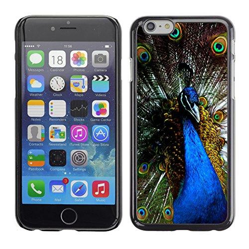 """Premio Sottile Slim Cassa Custodia Case Cover Shell // V00003005 bleu paon // Apple iPhone 6 6S 6G PLUS 5.5"""""""