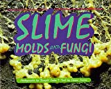 Slime, Molds and Fungi, Elaine Pascoe, 1567111823