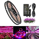 SJP Light®LED Plant Grow Strip Light Kit(Power Adapter Included),Full Spectrum SMD 5050 Red Blue 4:1 Lighting Ribbon For Indoor Aquarium Greenhouse Hydroponic Plants Flower Growing (5M)