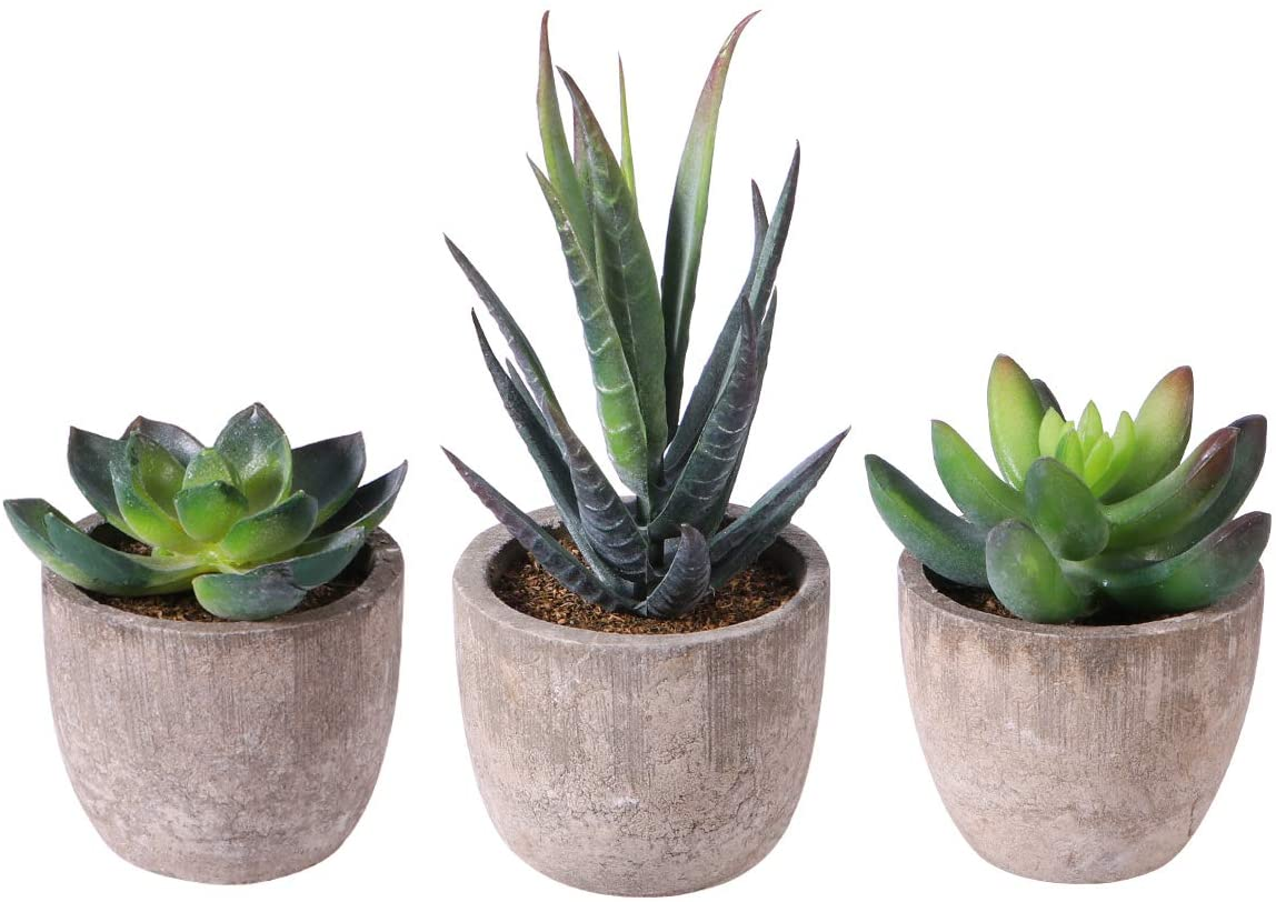 OUNONA 3pcs Faux Succulents/Artificial Cactus/Simulation Cacti Potted Plants Home Bonsai Decor Garden Greenery