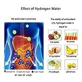 Hydrogen Alkaline Water Bottle Machine Maker