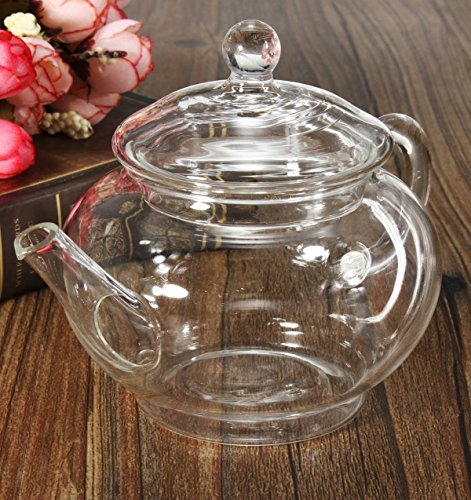 KINGSO Heat Resistant Elegant Glass Teapot with Glass Filter 250ml / 8oz