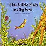 Little Fish in a Big Pond, Theresa O'Brien, 0859533905