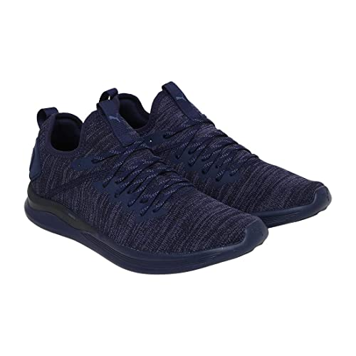 PUMA Herren Ignite Flash Evoknit Cross Trainer
