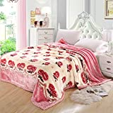 European style flowers/Floral Thickened Double layer Polyester Blankets-C 180220cm(71x87inch)