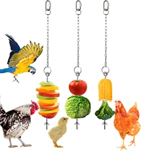 Geila Chicken Veggies Skewer Fruit Food Holder Chicken Toy for Hens, 3 Pcs Pet Chicken Vegetable Hanging Feeder Toy, Stainless Steel Foraging Toy for Hens Large Birds Treat Skewer