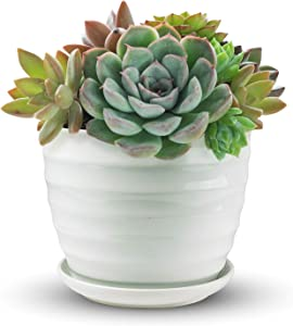 Ceramic Plant Pot Ceramic Planter with Attached Saucer for Outdoor and Indoor - Flower Pots for Garden Decor, Patio, Office and Home - 6.7In Width and 5.3In Height - White Plant Pots