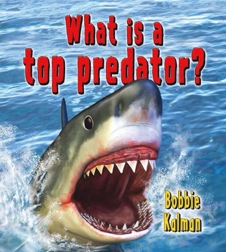 What Is a Top Predator? (Big Science Ideas (Paperback)) PDF