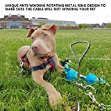 Dog Tie Out Cable and Stake, 10Ft 16FtPet Tie Out Cable, Stainless Spiral Stake and Adjustable Dog Collar - Complete for Small Medium Pets to Play in the Yard Camping or Outdoors (16FT, Sliver)