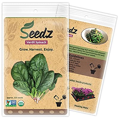 CERTIFIED ORGANIC SEEDS (Appr. 225) - Verdil Spinach - Spinach Seeds Heirloom Pack - Non GMO, Non Hybrid Vegetable Seeds - USA