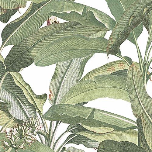 Norwall Kitchen (Norwall MH36534 Polynesian Leaves Wallpaper)