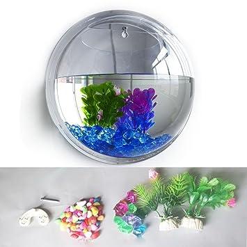 aoxintek Planta para colgar en la pared Mount burbuja acuario pecera, Cuenco Maceta de acrílico