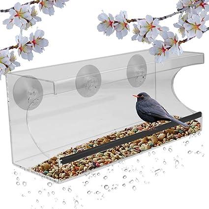 Amazon Com Evelots Window Bird Feeder See Thru 12 Inch 3 Strong Suction Cups Drain Holes Garden Outdoor