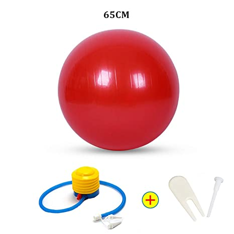 Amazon.com: Sports Yoga Balls Bola Pilates Fitness Ball Gym ...