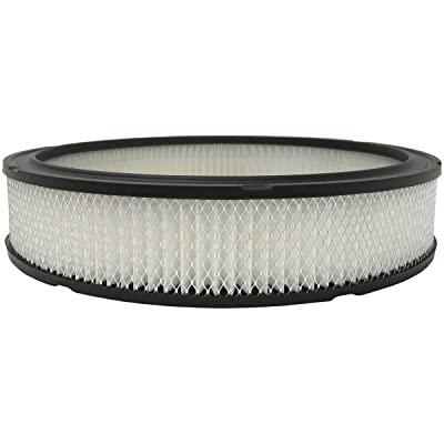 Luber-finer AF50A Heavy Duty Air Filter: Automotive [5Bkhe0912306]