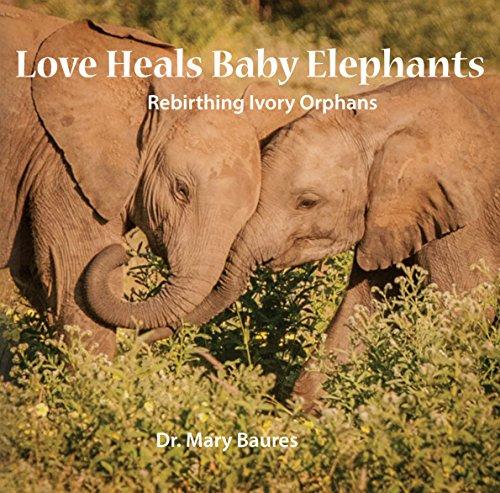Love Heals Baby Elephants: Rebirthing Ivory Orphans