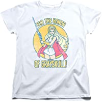 Popfunk She-Ra Honor of Greyskull T Shirt & Stickers