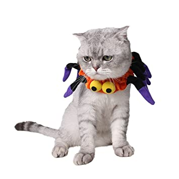 Amazon.com : Small Cat Dog Costume Spider Shaped Fancy Collar Halloween Festival Dress Up for Small Cats Puppies : Pet Supplies