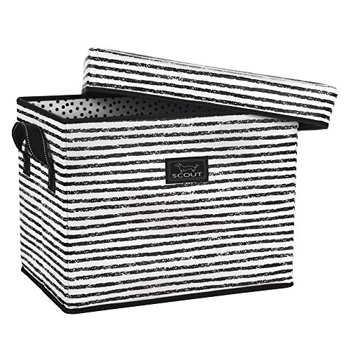 SCOUT Rump Roost Medium Lidded Storage Bin, Collapsible and Stackable, Reinforced Side Handles and Bottom, Water Resistant, Chalk Back