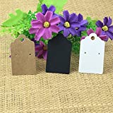 Lavenz 400pcs Kraft Earring Cards Blank Jewelry Cards Paper Display Cards Jewelry Hang Tags Accept Custom orders need add Extra cost