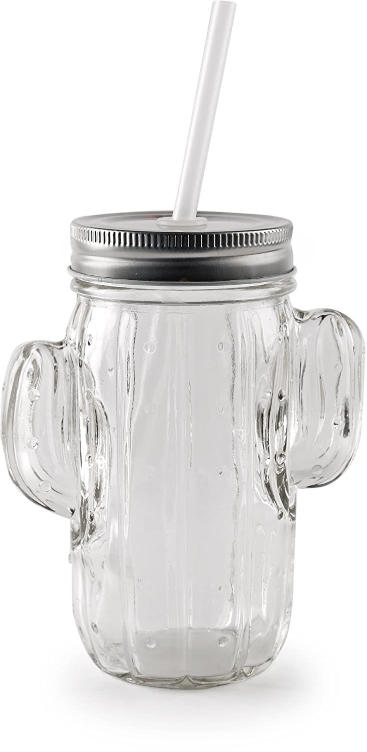 Glassware for Water Beer and Kitchen /& Home Decor Bar Dining Beverage Gifts Clear 15.5 oz Set of 4 Circleware Cactus Glass Mason Jars Drinking Glasses with Metal Lids and Hard Plastic Straws
