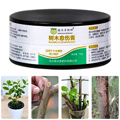 Tree Pruning Sealer Tree Pruning Sealer Pruning Compound for Garden Plant Grafting Wound Treatment: Home & Kitchen