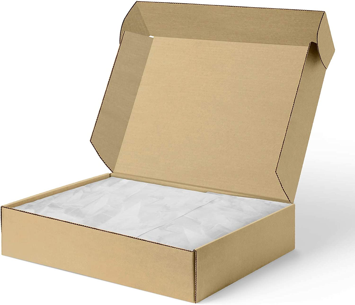 Cardboard Box Literature Mailer(23/×15/×5cm) FDGDFH 9/×6/×2 inches Easy to Mailer in Small Shipping Boxes Set of 25