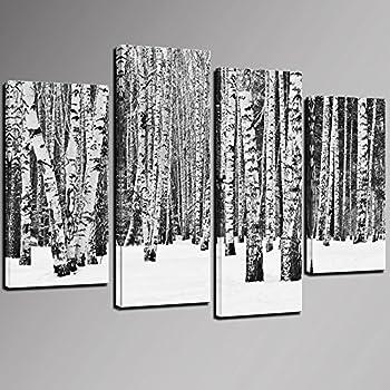 Amazon.com: Sea Charm- White Birch Tree Picture for Wall Decor ...