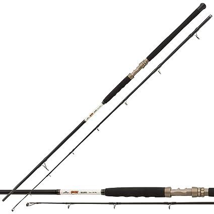 Exceler Catfish 3,30m 200-600g Daiwa Welsrute Angelrute Wallerrute