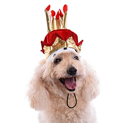 Legendog Dog Birthday Hat Pet Party Candles Pattern Cake Accessory Costume