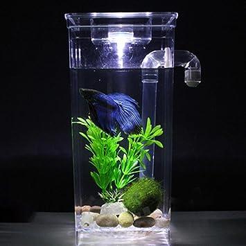 juxinuk 1pc Plastic Creative Ecology Fish Tank autolimpiante Tanque de Peces (2): Amazon.es: Productos para mascotas