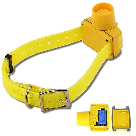Il Cane Da Caccia Impermeabile Suona Il Collare Con Cinghia Di