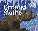Ground Sloths (Ice Age Animals)
