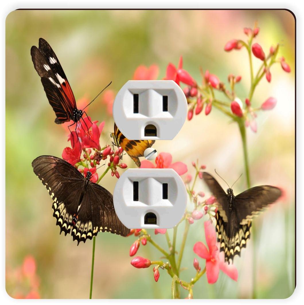 Rikki Knight Tropical Butterflies Single Outlet Plate