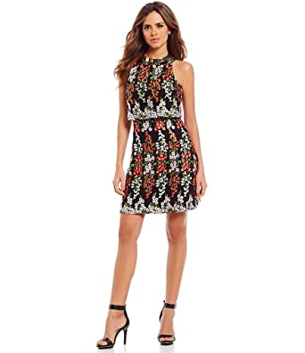 cc4868e77d9 Gianni Bini Tobie Crepe A-line Floral Embroidered Popover Dress Size 10 at  Amazon Women s Clothing store