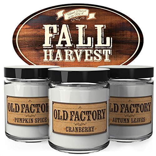 Scented Candles - Fall Harvest - Set of 3: Pumpkin Spice, Cranberry, and Autumn Leaves - 3 x 4-Ounce Soy Candles - Each Votive Candle is Handmade in the USA (Fall Harvest Pumpkin)