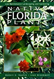 Native Florida Plants, Robert G. Haehle and Joan Brookwell, 0884154254