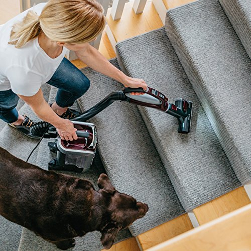 Shark Rotator TruePet Upright Corded Bagless Vacuum for Carpet and Hard Floor with Powered Lift-Away Hand Vacuum and Anti-Allergy Seal (NV752), Bordeaux
