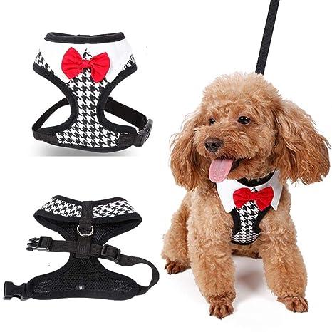WPANgmz Animal Perro Collar Leash Collares Y Arneses para Perros ...